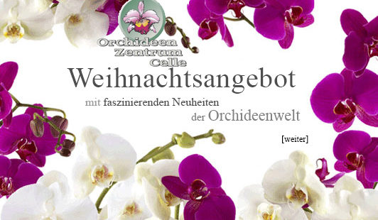 Orchideen Zentrum Celle